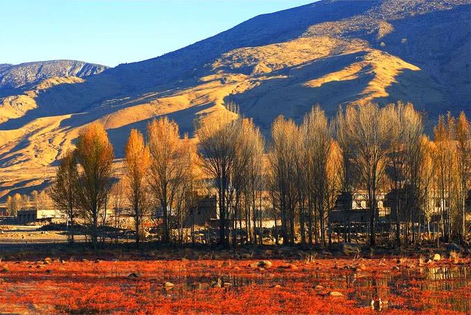 看过亚丁和九寨黄龙的绝色美景,再到青城山像似走近另一个世界