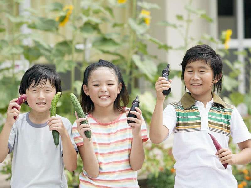 """从""""育儿焦虑""""到""""剧场效应"""",中国式疯狂暑假何时休?"""