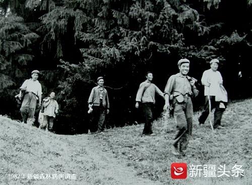 真菌学家赵震宇91岁仍扑在科研上