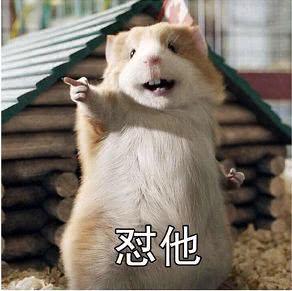 乐虎国际官方登录