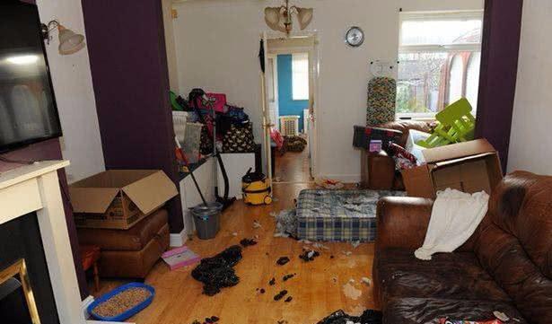 一家人拖欠4万房租后消失,只留下满地垃圾和粪便,网友:没素质