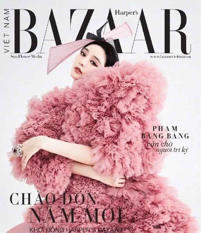 """范冰冰登越南杂志,美是很美,其实超""""掉价"""""""