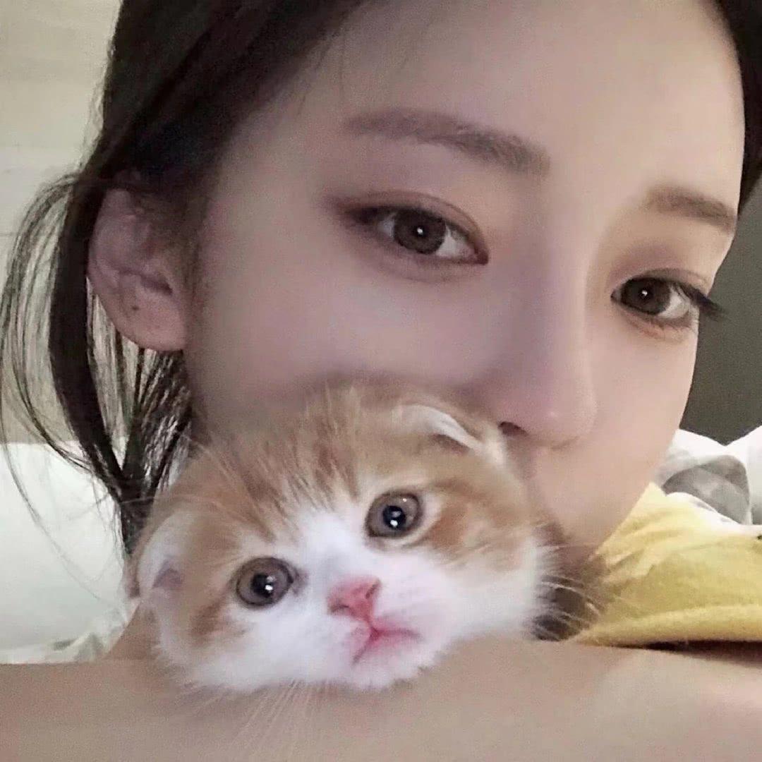 网易云热评:她问我的猫为什么叫樱花,因为第一次见她,她的发夹是……