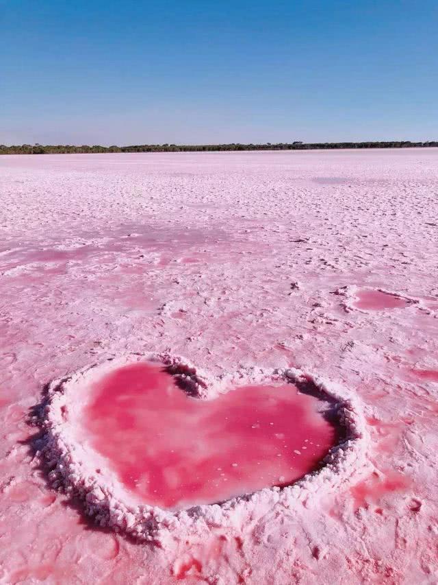 澳大利亚粉色湖泊,大自然也有颗少女心