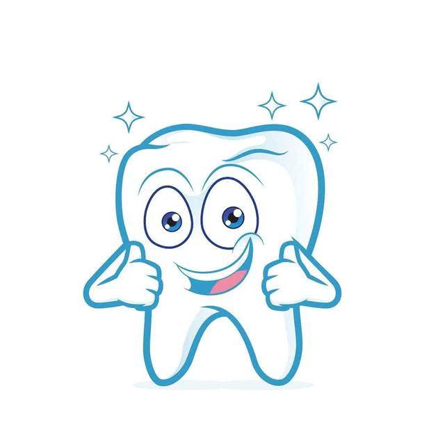 <b>我们的牙齿到底从哪来的呢?</b>