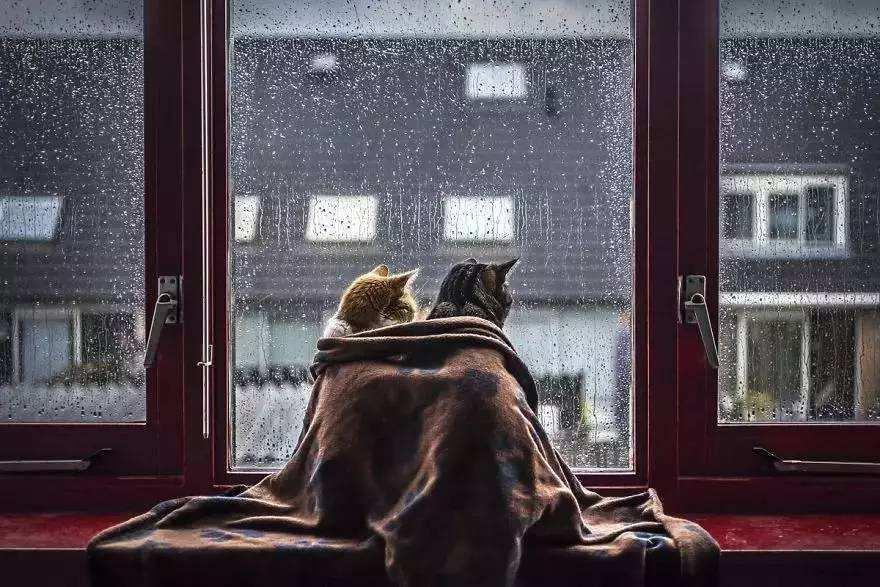 <b>白居易冬至夜想家,写下一首唐诗,淡淡的思乡愁流传至今</b>