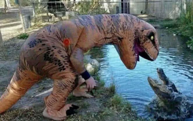 假恐龙和真鳄鱼PK,谁胜谁负呢网友鳄鱼加油!