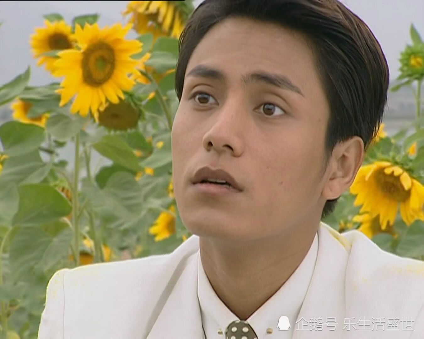 金粉世家:观赏向日葵时,为何冷清秋会独自离开花海?不愧是才女