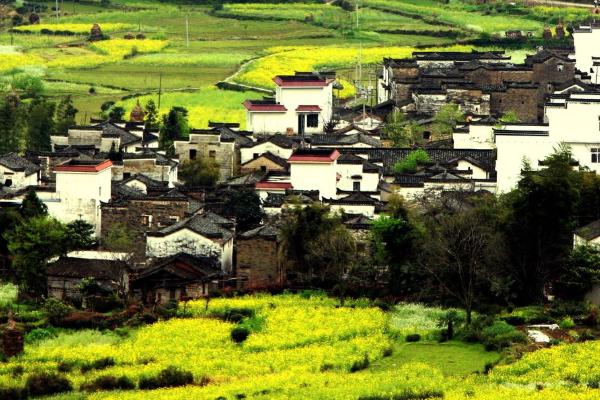 江西天然氧吧,被称中国最美乡村,是你老家吗?