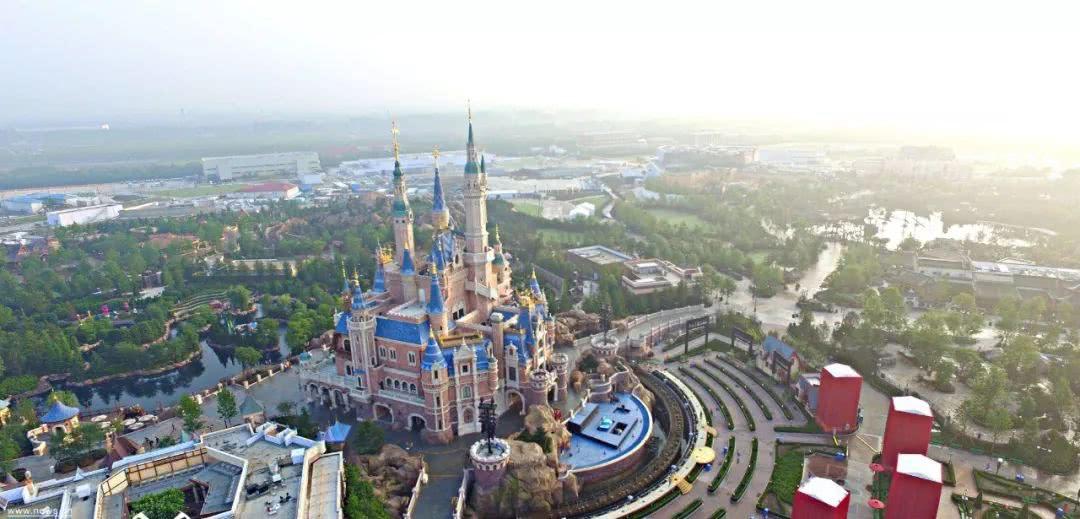 上海迪士尼,消费者,华东政法大学,迪士尼,上海迪士尼乐园