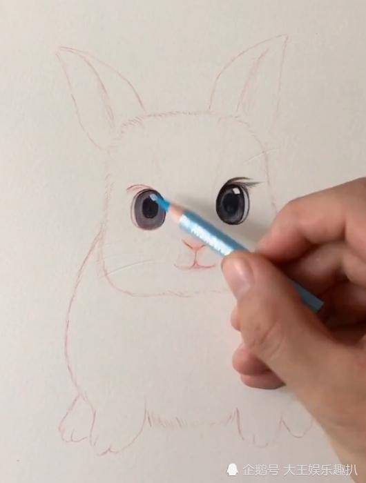 美术生画兔子,圆润饱满非常萌,网友:伙食不错啊,吃这么肥