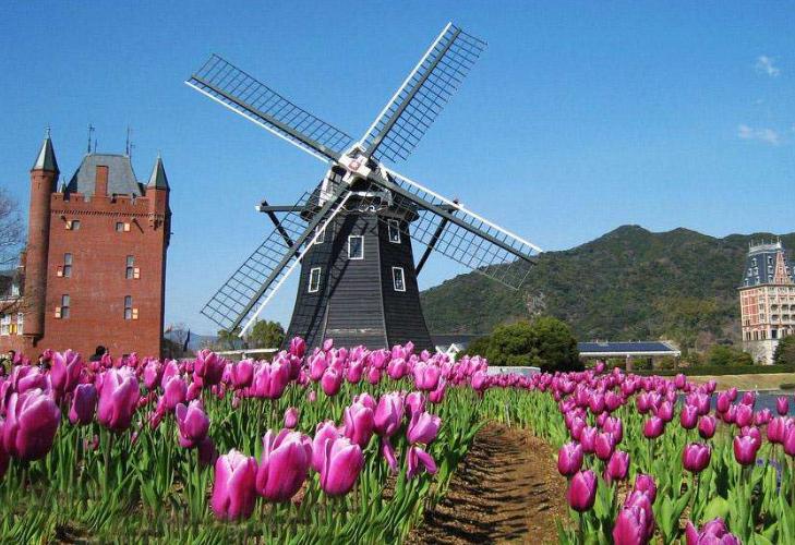 荷兰一绝美村镇,却禁止中国观光团进入,仅因认为太鼓噪情况受损
