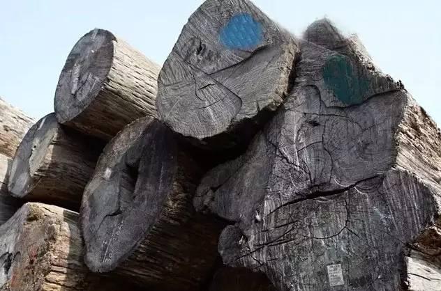 2000斤红木只能做500斤家具,还有1500斤去哪儿了