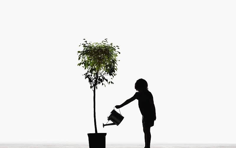 持续干旱,倡议市民:提桶执盆,去浇一株树、保一棵苗