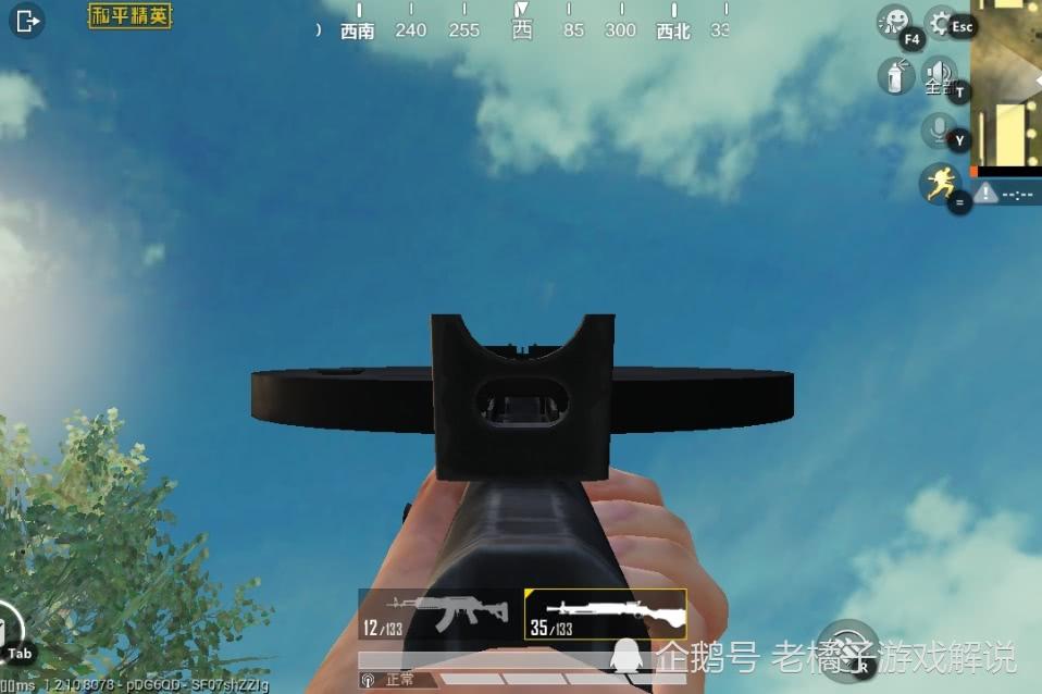 和平精英:一把被低估的大口径枪械,威力巨大,稳定性堪比M4!