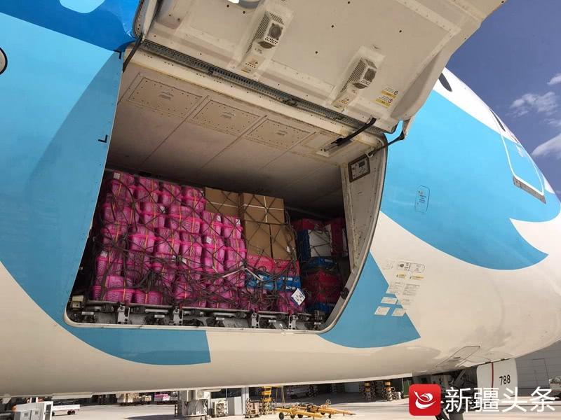 """波音""""大肚皮""""日均飞运喀什西梅18吨到上海广州"""