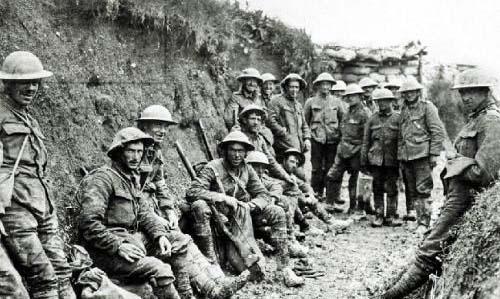 七叶果,一种不起眼的植物,帮助英国军队打败德国