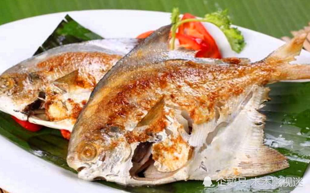 这5种海鱼不但适合干煎,而且偷偷告诉你,它们都是野生的!