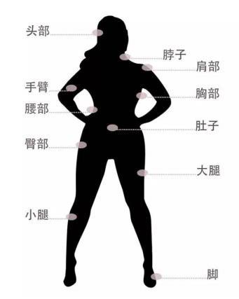 <b>解析11个身体的秘密,胖,一样可以漂亮又精致!</b>