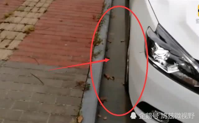 靠边停车怎么看车子右侧轮胎和马路牙子的距离?