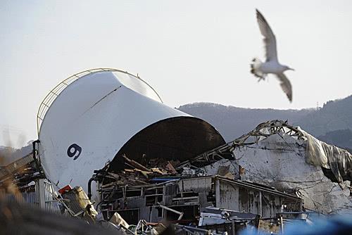 """东日本大地震""""海啸传承馆""""将开馆 配中文解说员"""