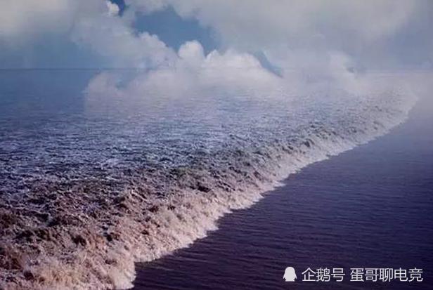 浙江冷知识有哪些?《射雕英雄传》的桃花岛是舟山所属的海岛