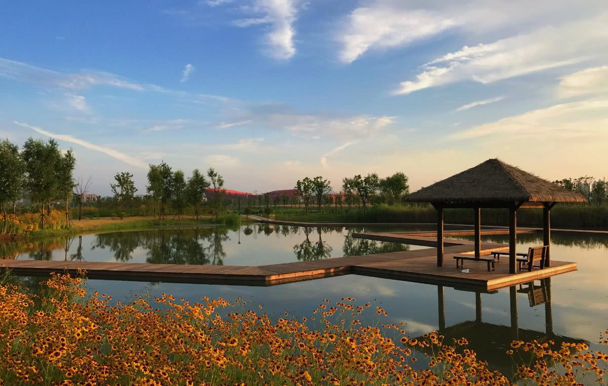 """安徽不知名的城市湿地公园,总面积4.75平方公里,以""""西湖""""命名"""
