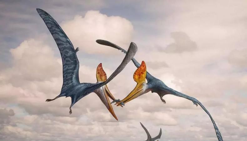 一百多年前,美國人抓住了一只翼龍,并拍下像,像經鑒定無PS