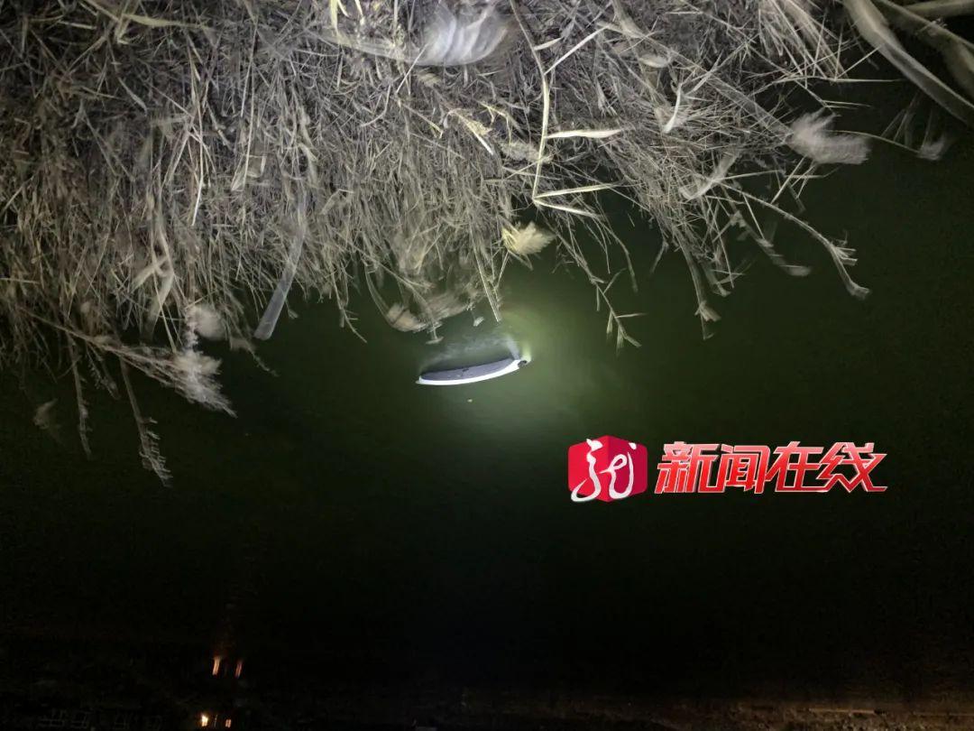 「东莞男子救落水女子溺水身亡」突发!大庆一女子驾车冲进水塘不幸身亡!落水后打了一个电话……