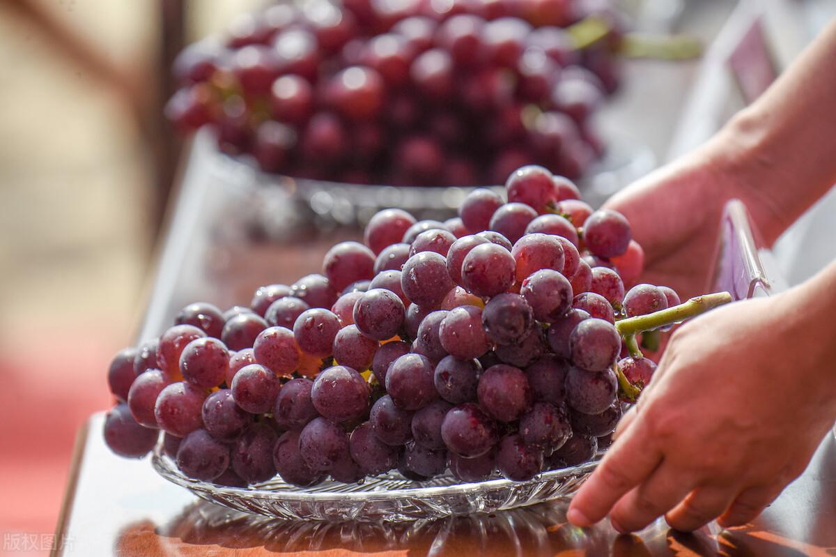 去超市買葡萄時,這4種葡萄再便宜也不要買,不新鮮還浪費錢