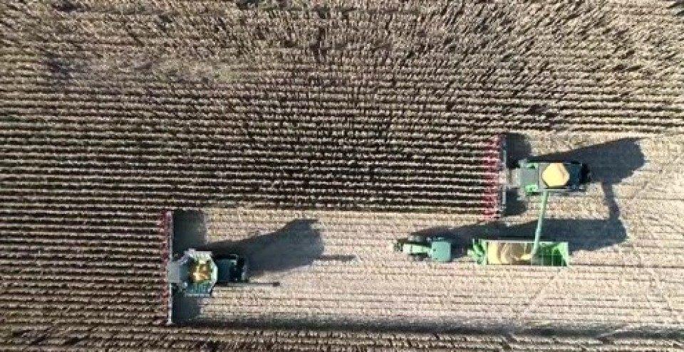 「4yw-2a玉米收割机」视频丨法国农场里约翰迪尔收获机全天候收获玉米