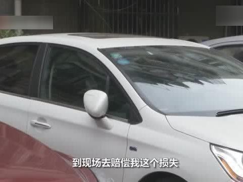 「榜样母亲的言传身教」言传身教!男孩砸了车玻璃主动告知母亲 母亲报警主动赔偿