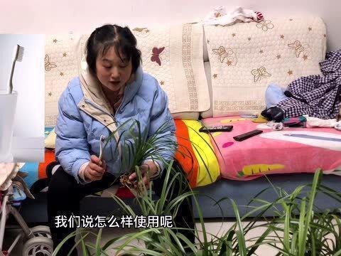 「老物件有哪些」我们每天都要用的一个小物件,用来刷洗兰花,兰花小妹和你分享使用方法
