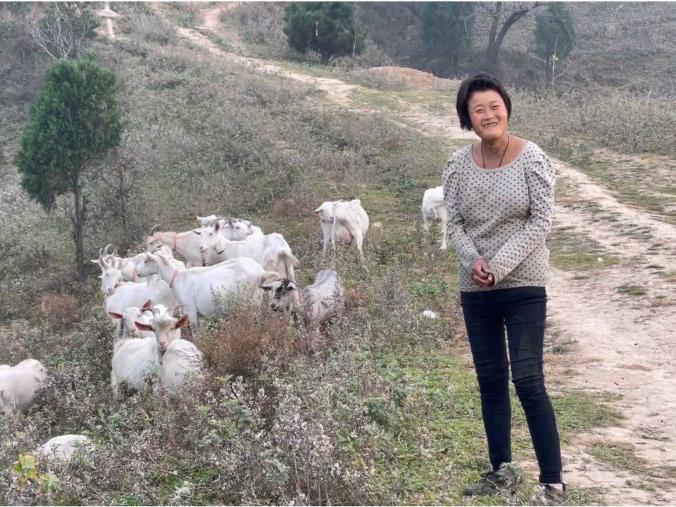 「我要飞到天上去去呀去放羊」从3岁一直到21岁都在放羊,自称没读过书,她的未来究竟会怎样
