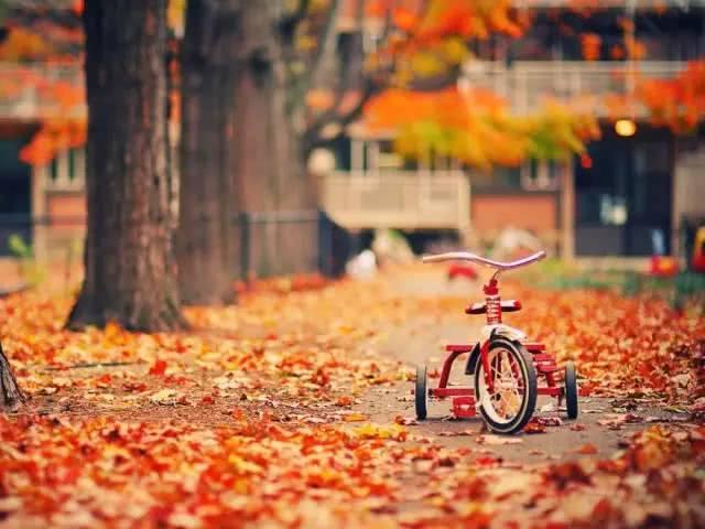 如何拍好秋季美景?你需要這 10個技巧