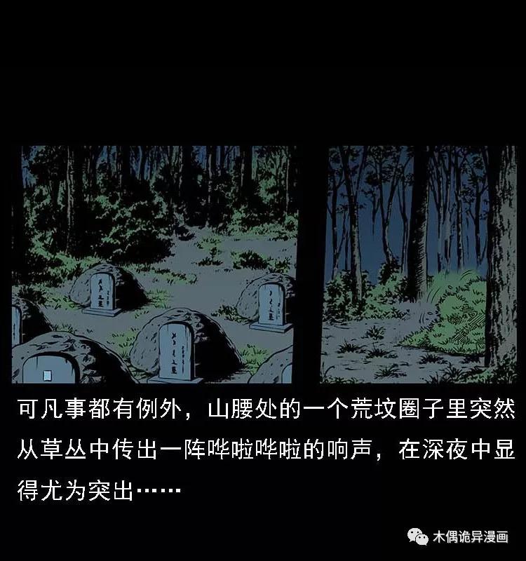 僵尸王漫画:诡案实录之坟地鬼影