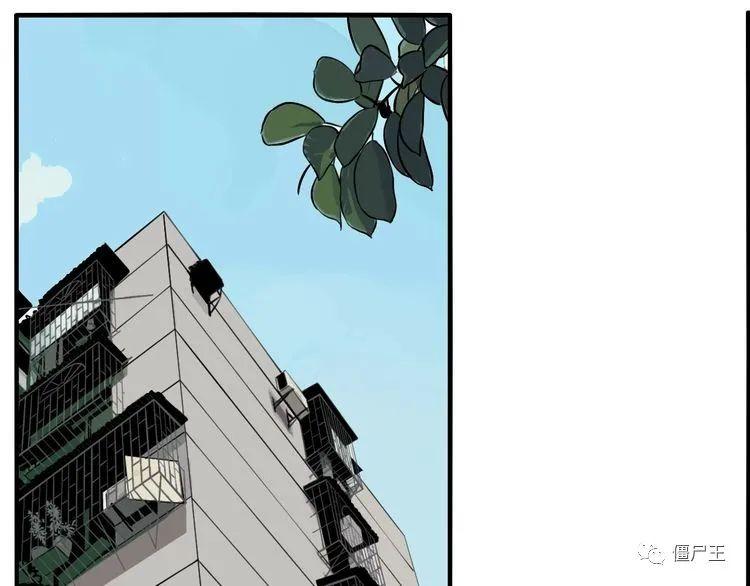 僵尸王漫画:傀园 | 重要的事