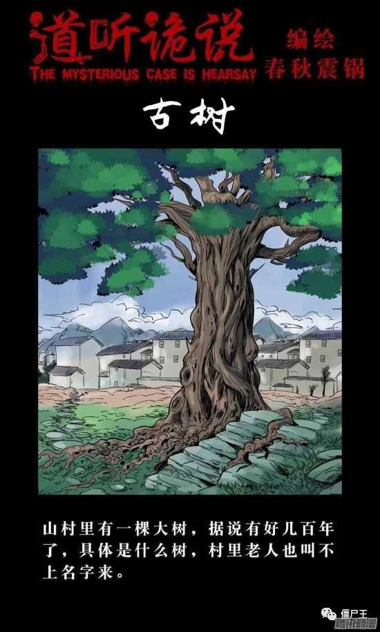 恐怖漫画:诡说之《古树》离奇消失的小孩-僵尸王