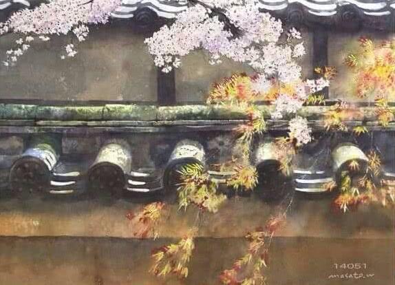 日本水彩画家渡部政人笔下的樱花-看点快报