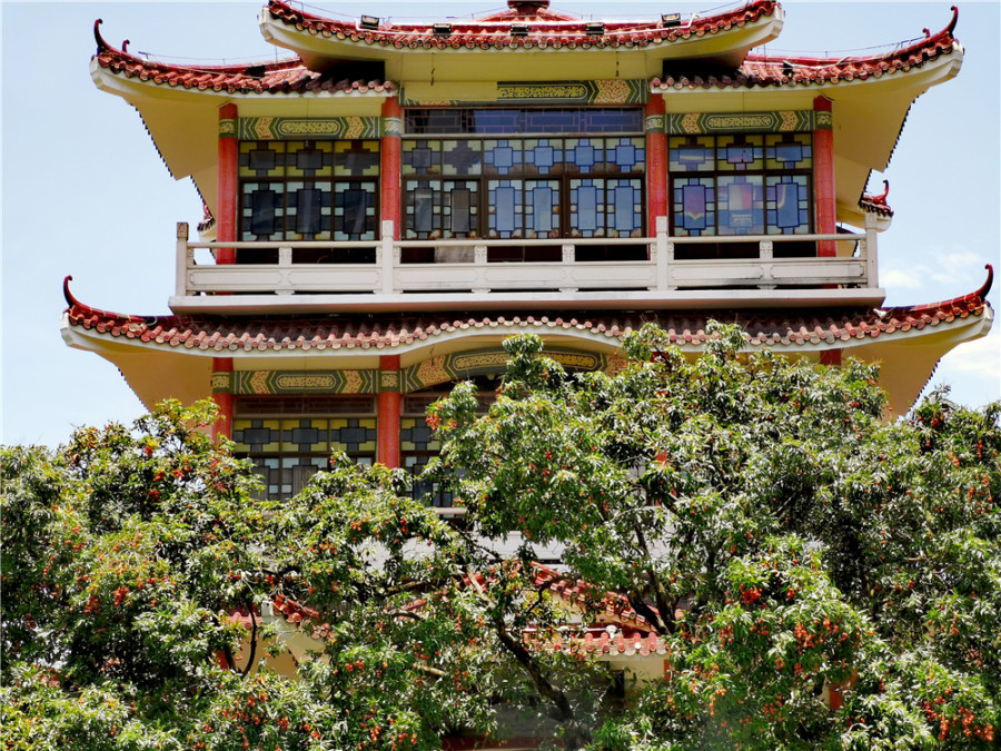 深圳荔枝公园之荔香阁掠影:端庄典雅的建筑与荔枝树相映成趣(图1)